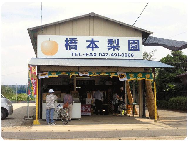 直売店の画像