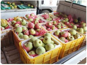 コンテナいっぱいの梨の画像